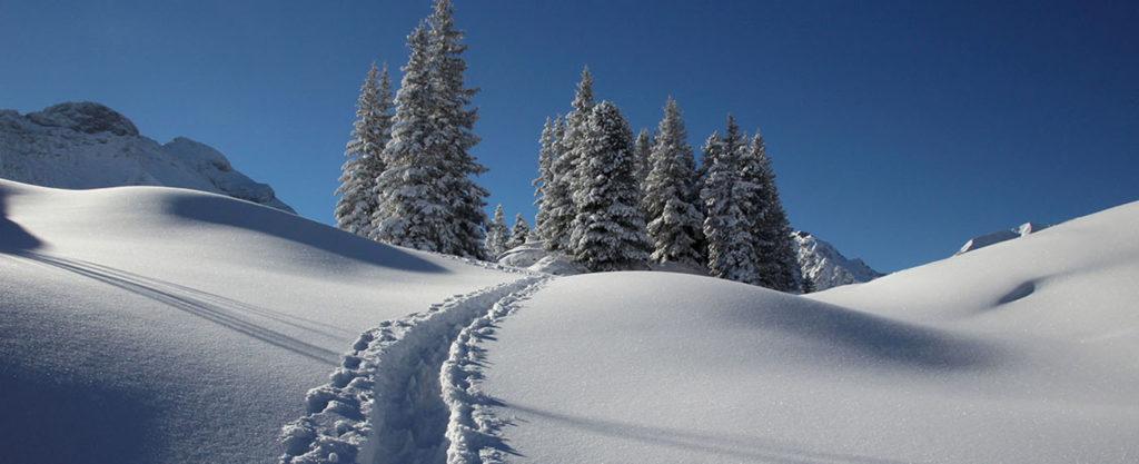 Schneearten Ratgeber - verschiedene Schneearten